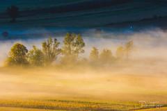 20171007-DSC_1372 (patricktangyephotography) Tags: travelphotography travelphotos exploretheworld explore exploring travel citylife city urban sunrisephotos sunrise dawn goldenhour morning nikonphotography nikon