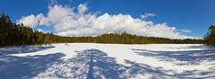 Stora Bladträsk - Siuntio (mustohe) Tags: siuntio 2018 finland panorama winter talvi maisema landscape canon hugin pilvet clouds metsä forest lumi snow