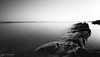 Rock Hard (The Pixel and Eye) Tags: fife blackandwhite calm coast forth landscape longexposure minimalist river riverforth rocks scotland sea seascape seaside water