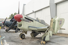 Fairey Firefly 1 (Gösta Knochenhauer) Tags: 2018 january bangkok thailand south east asia panasonic lumix fz1000 dmcfz1000 royalthaiairforcemuseum p9130433nik p9130433 nik childrensday thai royal air force aircraft plane museum national aviation fairey firefly 1
