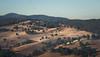 Sunburned (Skye Auer) Tags: drought dry autumn australia victoria tubbut farm