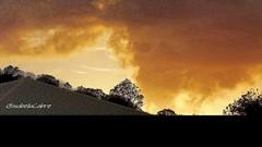 The sky is on fire Couché de soleil à la Martinique #Martinique #lefrancois #sunset #colours #carribeanlifestyle #carribean #travel #trip #lifestyle #photography #carribeansunset #tomorrowisanotherday#hope #sky #clouds #goldenhour #theskyisonfire (isabella.cabre) Tags: trip lifestyle carribeanlifestyle colours carribean theskyisonfire goldenhour tomorrowisanotherday clouds photography sky lefrancois martinique carribeansunset sunset hope travel
