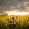 colza (to the horizon) (iwona_podlasinska) Tags: iwona colza plane toy dreams sky clouds sunset aviator
