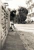 猫 (fumi*23) Tags: ilce7rm3 sony 55mm sel55f18z cat chat gato sonnartfe55mmf18za zeiss sonnar ねこ 猫 ソニー クリーム調 miyazaki 宮崎 モノクロ emount 街の猫