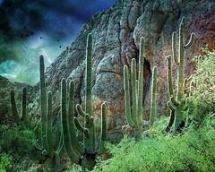 Saguaro Fantasy (Chuck Pacific AKA Chuck Tofu) Tags: boycethomson saguaro cactus arizona superior desert fantasy distressedfx southwest eerie green blue birds explore ipad