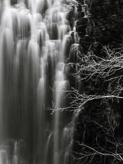 Cascade de la Barthe, Picherande (herissonenerve) Tags: cascade chute deau noirblanc auvergne puydedôme picherande france besse pauselongue roche nature parcsdesvolcans sancy