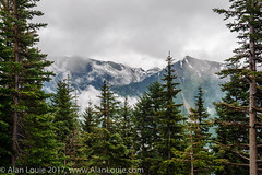 20110714 Mt Ranier 007.jpg (Alan Louie - www.alanlouie.com) Tags: landscape mountrainier washington packwood unitedstates us uspacific