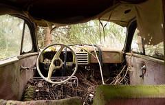 Holzklasse (mariburg) Tags: rotten marode ruin decay desolate cars rustycars auto canoneos6d sigma35mm14dghsmart