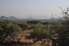 Самбуру (Oleg Nomad) Tags: африка кения самбуру сафари животные природа africa kenya samburu animals nature travel