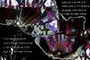 No volvere... (seguicollar) Tags: imagencreativa photomanipulación art arte artecreativo artedigital virginiaseguí novolveré canción chavelavargas música poesía