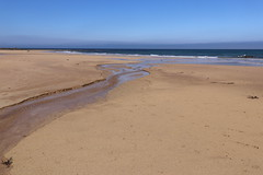 St Combs Beach_may 18_646 (Alan Longmuir.) Tags: stcombsbeach grampian aberdeenshire stcombs