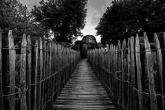 Un air de vacances (Meculda) Tags: bois monochrome monochrom noiretblanc blackandwhite nikon grandangle palissade arbre tree ciel paysage landscape