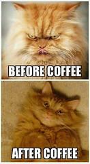 Photo (unholy2) Tags: coffee