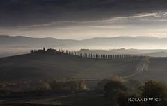 Val d'Orcia (Rolandito.) Tags: europa europe italia italy italien italie toscana toskana val dorcia orcia morning cypress tree roe cipressi