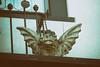 little gargoyle (annapolis_rose) Tags: vancouver eastvan balcony gargoyle