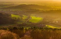 Sutton bank sundown (snowyturner) Tags: suttonbank valeofyork escarpment vista sunset shadows trees hills landscape yorkshire fields kilburn