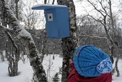 Blå / Blue (KvikneFoto) Tags: vinter winter snø snow natur leicax1