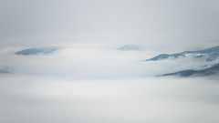 View from the top (- David Olsson -) Tags: branäs branäsberget värmland sweden top view misty mist fog dimma still calm smooth relaxing tranquility handheld nikon d800 70200 70200mm f4 vr fx widecrop 16x9 white landscape nature outdoor grand april 2018