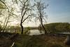 _T1A5016 Morgenlicht im Frühlingsmoor (idunavision) Tags: weitwinkel landschaft water