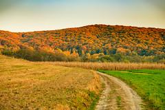 RPOP_20091025_1644_3145.JPG (Raoul Pop) Tags: autumn googlephotos valleys transilvania countryside canionulmihailesti romania fields trees roads hills fall smugmug canyon nearmihaileni ro