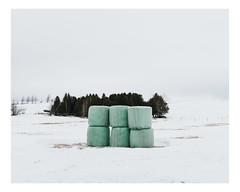 saint-patrice-de-beaurivage (Mériol Lehmann) Tags: trees landscape beauce topographies fields bales canada rural quebec winter snow saintpatricedebeaurivage québec ca
