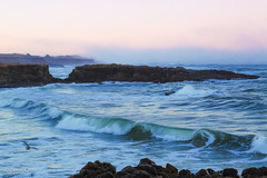 By the Sea (buffdawgus) Tags: coastalcalifornia california sanmateocountycoast sanmateocounty pacificcoast californiacoast landscape pacificocean pescadero canonef24105mmf4lisusm westcoast seascape topazsw lighroom6 canon5dmarkiii sanmateocountycoastline