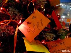 P1650095 (Christen Ann Photography) Tags: 2017 auckland christmas christmaslights christmaslights2017 december2017 lights motat motatevent museumoftransportandtechnology newzealand watermarked westernsprings