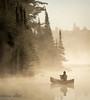 Photographer In The Mist (maureen.elliott) Tags: mist canoeist photographer canoe lake earlymorning algonquinpark trees water