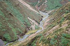 Valley and river between Nyile La pass and Lingshi - Thimphu District - Snowman Trek - Bhutan (PascalBo) Tags: nikon d500 asie asia southasia asiedusud drukyul drukgyalkhap bhutan bhoutan འབྲུག་ཡུལ། འབྲུག་རྒྱལ་ཁབ་ snowman trek trekking hike hiking lunana thimphu himalaya himalayas jigmedorjinationalpark landscape paysage montagne river rivière outdoor outdoors pascalboegli