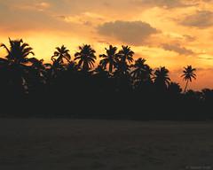 SSS_9621.jpg (S.S82) Tags: incredibleindia beach landscape sunset nature india westernghats karnataka padu seascape kapubeach evening sea ss82 landscapephotography ocean seashore indiaclicks indiagram landscapecaptures nikonphotography nikontop photographersofindia storiesofindia kaup in