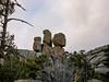 The Owls (jphenney) Tags: snow mountians rockies estes park rocky mountains rmnpcolorado