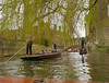 Busy day on the river Cam (Matt C68) Tags: cambridge punt boat river tree willow bridgeofsighs cam rivercam punting bridge