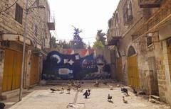 Hebron Old City (Kachangas) Tags: israel israeli hebron palestine palestinian settlement apartheid arab arabs israelioccupation occupation militaryoccupation caveofthepatriarchs abraham islam jews jewish hebrew judaism prophet matriarchs army israeliarmy stones resistance freepalestine freeisrael