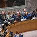 180327 Blok voorzitter VN-Veiligheidsraad