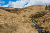 NB-97.jpg (neil.bulman) Tags: kinder countryside landscape peakdistrict nature nationalpark derbyshire beauty hills edale hopevalley nationaltrust england unitedkingdom gb