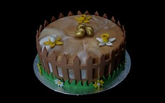 Easter Cake (terencepkirk) Tags: canon cake fondant food flowers easter marble