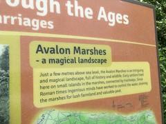 magical landscape (bloomspix) Tags: walknow somerset avalon artist walk