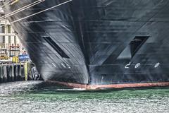 Bow--SS Veendam (PAJ880) Tags: ss veendam cruise ship south boston ma flynn cruiseport moored bow detail