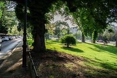 Jardins de l'avenue Foch (maxfisher) Tags: paris16earrondissement îledefrance france