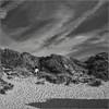 Pas facile la grimpette !!! (Des.Nam) Tags: nb noiretblanc noirblanc nordpasdecalais nord bw blackwhite monochrome mono sable dunes desnam fuji fujinon fujixpro2 flandres mer plage cielnuageux 35mmf14 xpro2 xpro2square xprostreet