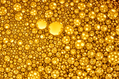 MacroMondays - Circles (josepperelloflorit) Tags: macromondays circles