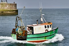 Capella PW8 - Peterhead Harbour - Scotland - 30/5/2018 (DanoAberdeen) Tags: candid amateur danoaberdeen peterhead harbour blootoon seaport docks fishing ships boats vessels northsea trawlers fishermen maritime seafarers northeast scotland scottish peterheadscotland autumn summer winter spring merchantnavy bluesky pw8 capella pw8capella mackrel haddock cod fish tug tugboats tugboat bloo toon offshore oil rigs cargoships supplyships psv gb uk abdn abz fishingtrawlers scottishtrawlers