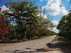 Algún camino en México (Jc Hurtado) Tags: beach méxico playa caribe tropical cobá maya