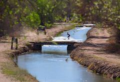 surfing the canal (johngpt) Tags: fujinonxf55200mmf3548rlmois fujifilmxt1 irrigationcanal teens towsurfing