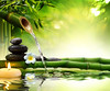 211639102 (macl727) Tags: bamboo beauty buddhism calmness candle concept copyspace environment flow flower foliage forest fountain fresh green health healthy japanese leaf meditation nature oriental plant plumeria relaxation spa stones stream treatment water wave wellbeing zen