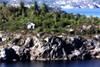 Onkel Tom's Hütte (Zoom58.9) Tags: felsen küste hütte wald bäume fjord wasser einsamkeit grün europa skandinavien norwegen bergen rocks coast hut forest trees water lonliness green europe scandinavia norway lanschaft lanscape natur nature canon eos 50d