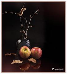 Sei jedem Abschied voraus! (john_berg5) Tags: stilllife stillleben abschied farewell autumn indoor fleshlight