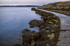Walkway at Islandhill @ Dusk (dareangel_2000) Tags: islandhill comber countydown seaside shore coastline coastal seascape seascapephotography dariacasement northernireland landscape