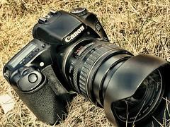 Rest. (Marcin eM.) Tags: canon dslr 30d camera