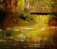 My magic pond (BirgittaSjostedt- away for a while.) Tags: water pond waterlily bridge forest scene golden texture paint birgittasjostedt